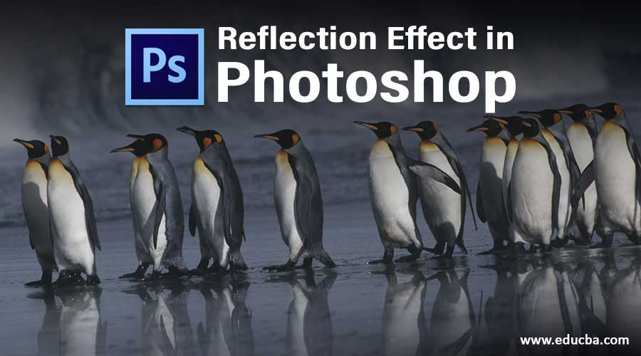 Reflection Effect in Photoshop