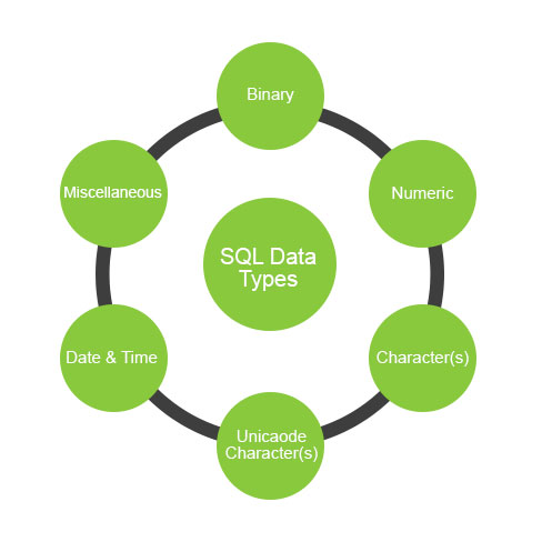 Types of SQL Data