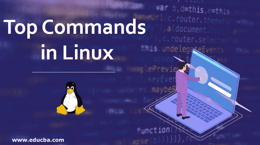 Top Commands in Linux