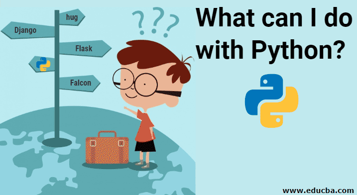 What can I do with Python