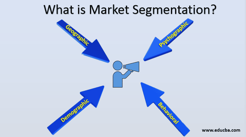 What is market segmentations