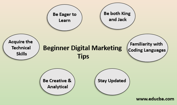 beginner digital marketing tips