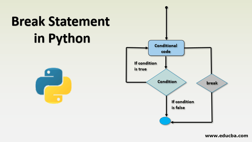 Break Statement in Python