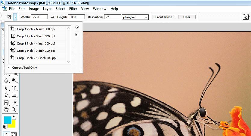crop submenu (Crop Tool in Photoshop)