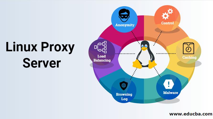 Linux Proxy Server