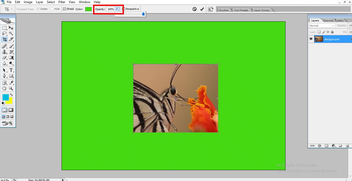 opacity in crop (Crop Tool in Photoshop)