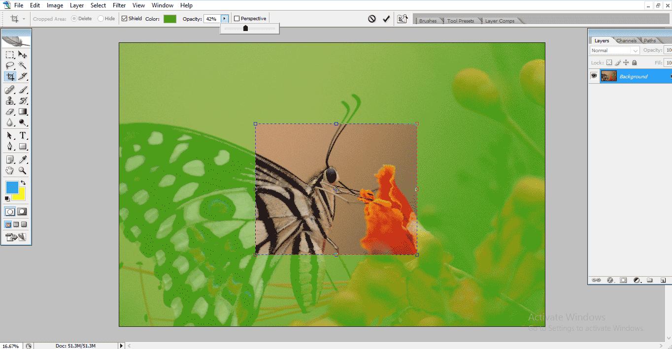 transpency 50% (Crop Tool in Photoshop)