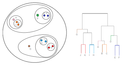 types of clustering 2
