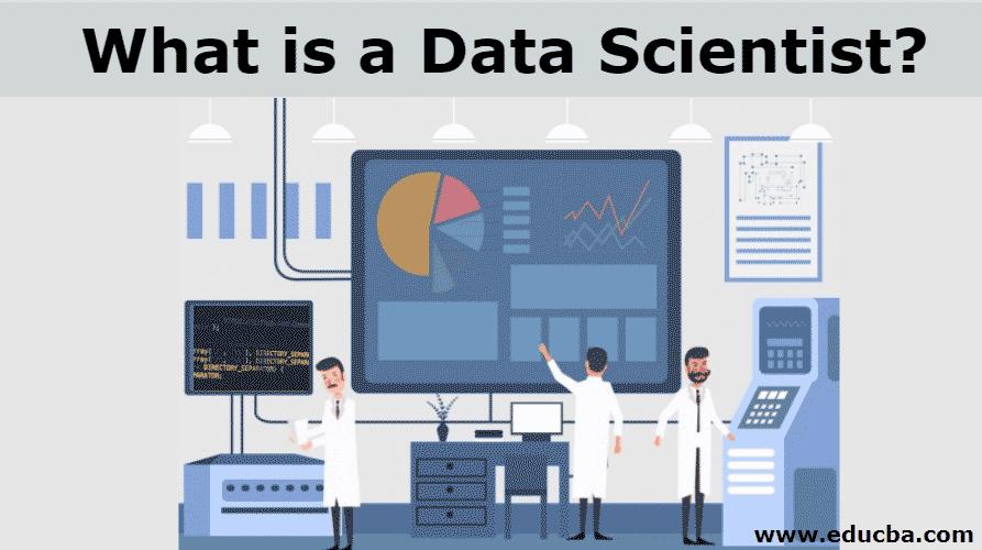 what is data scientist