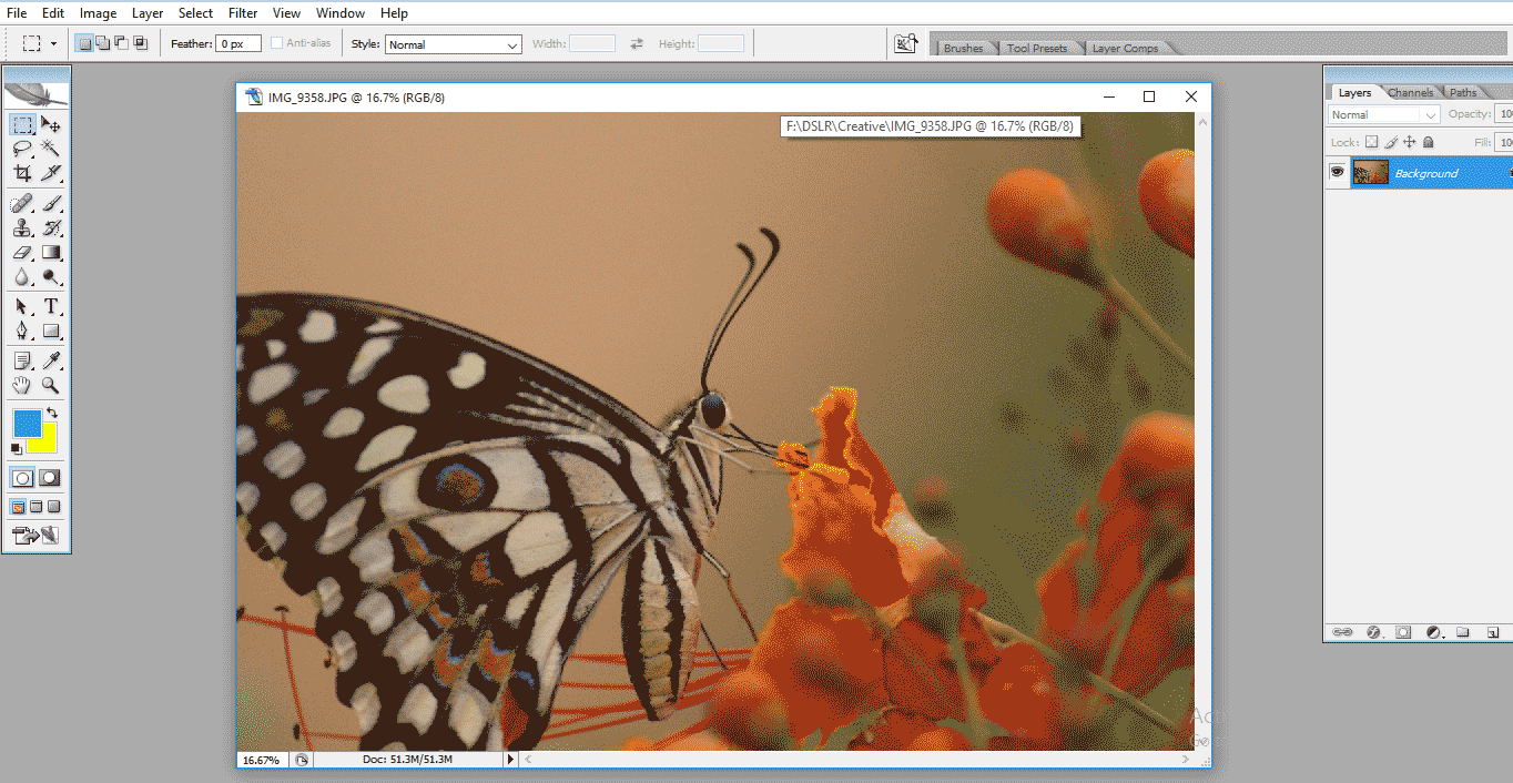 working image (Crop Tool in Photoshop)