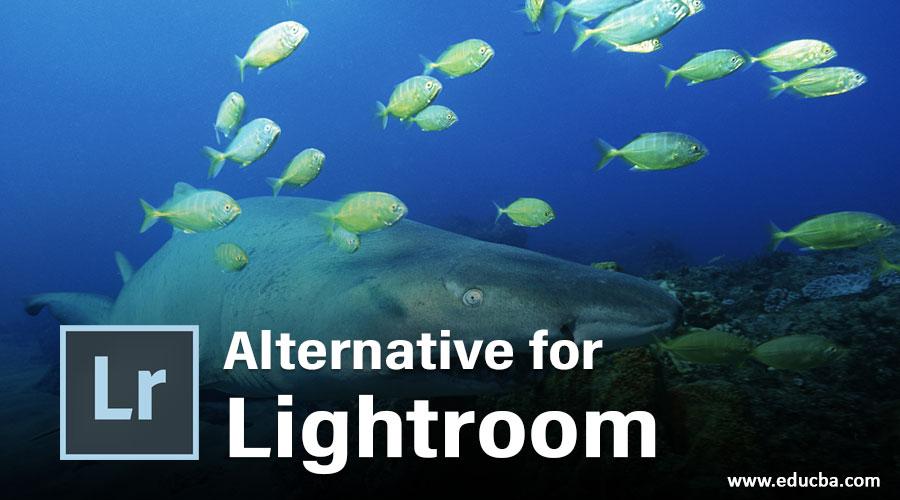 Alternative for Lightroom