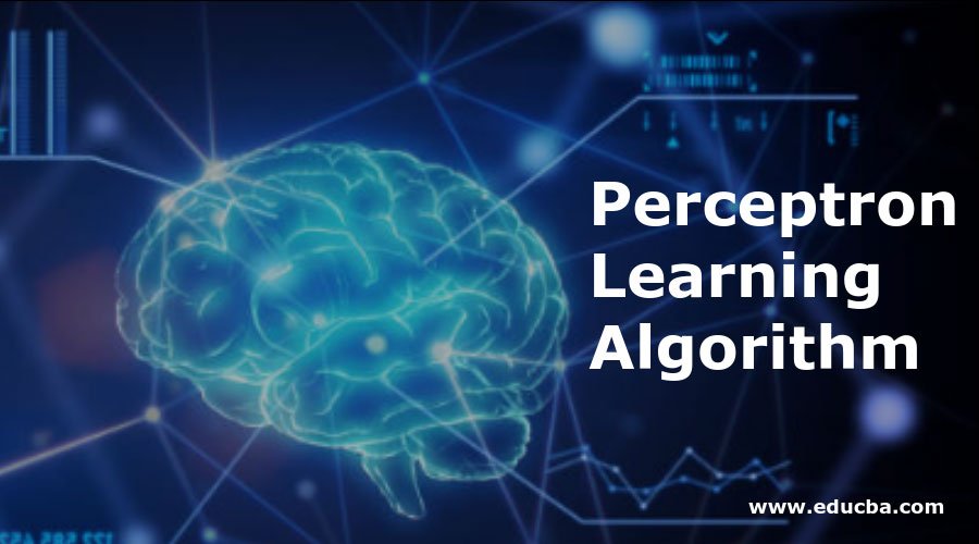 Perceptron-Learning-Algorithm