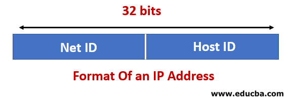 Two Parts in IP Address