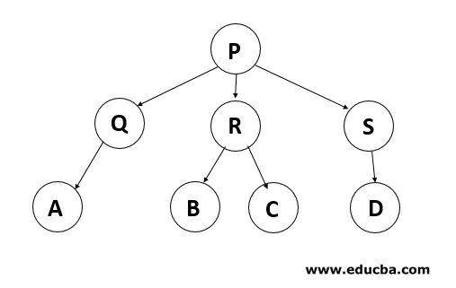 Types of Trees in Data Structure 1