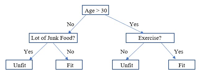 What is Decision Tree 1-1