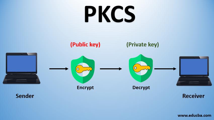 Public Key Cryptography Standards