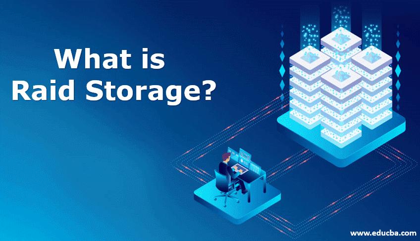 what is raid storage?