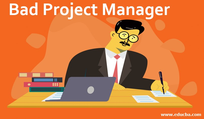 Bad Project Manager