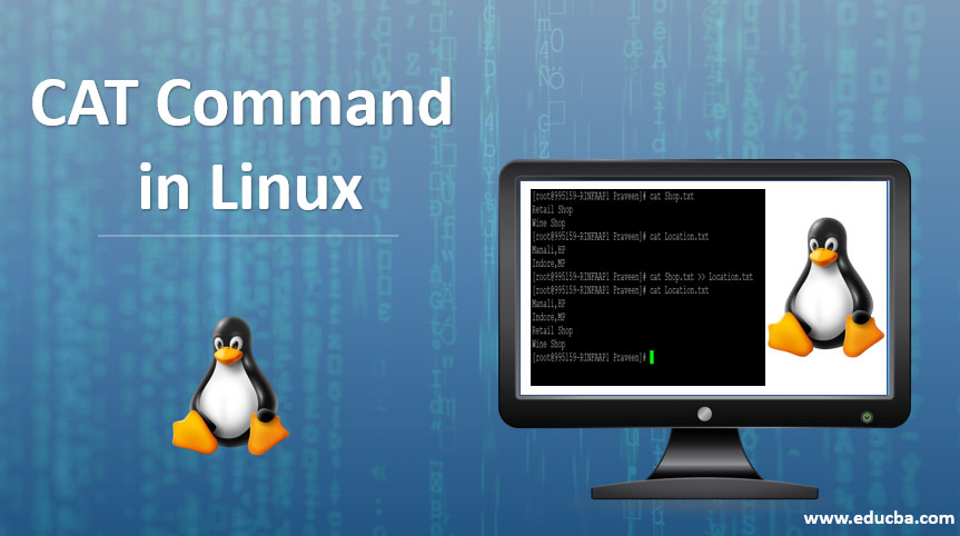CAT-COMMAND-IN-LINUX