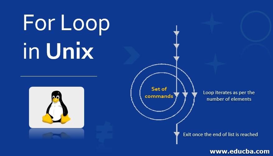 For Loop in Unix