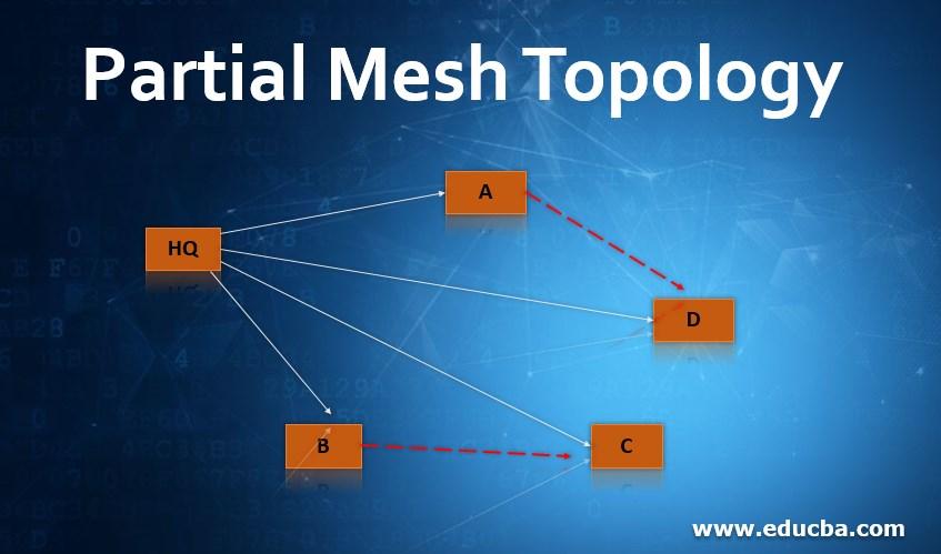Partial Mesh Topology
