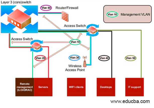 Management VLAN