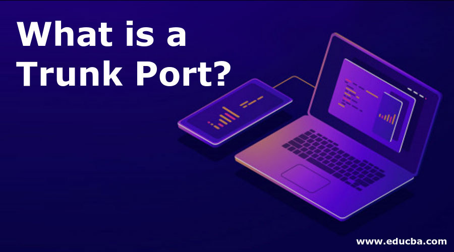 What is a Trunk-Port