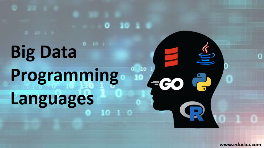 big data programming languages