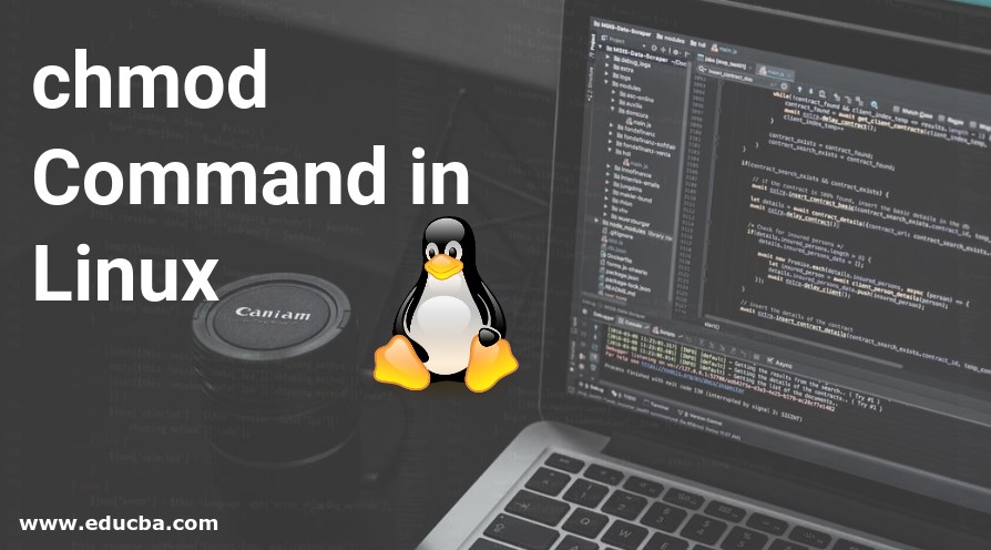 chmod command in linux