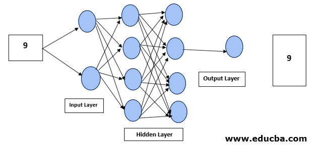 Working of Deep Learning Networks
