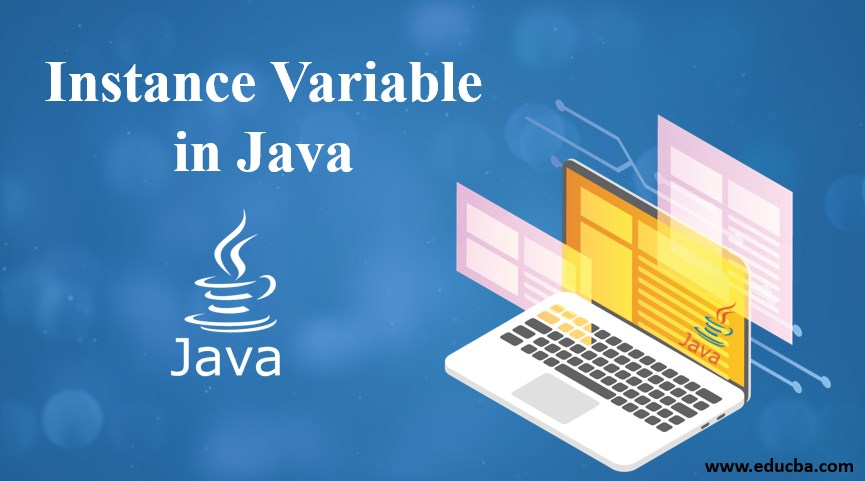 instance variable in java
