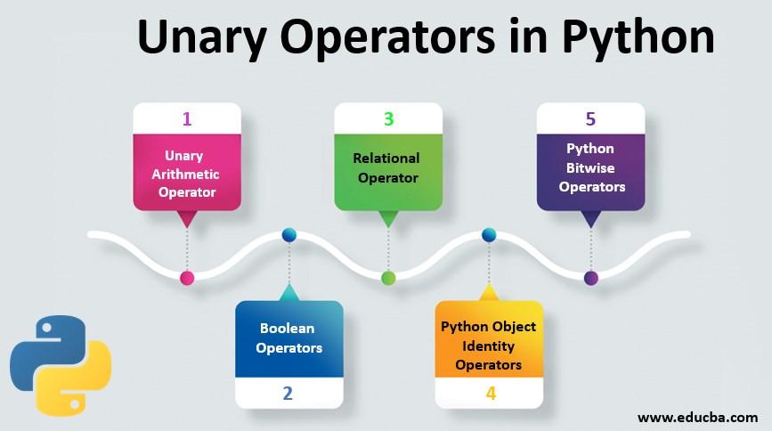 Unary Operators in Python