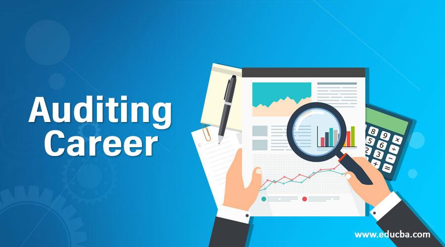 Auditing Career