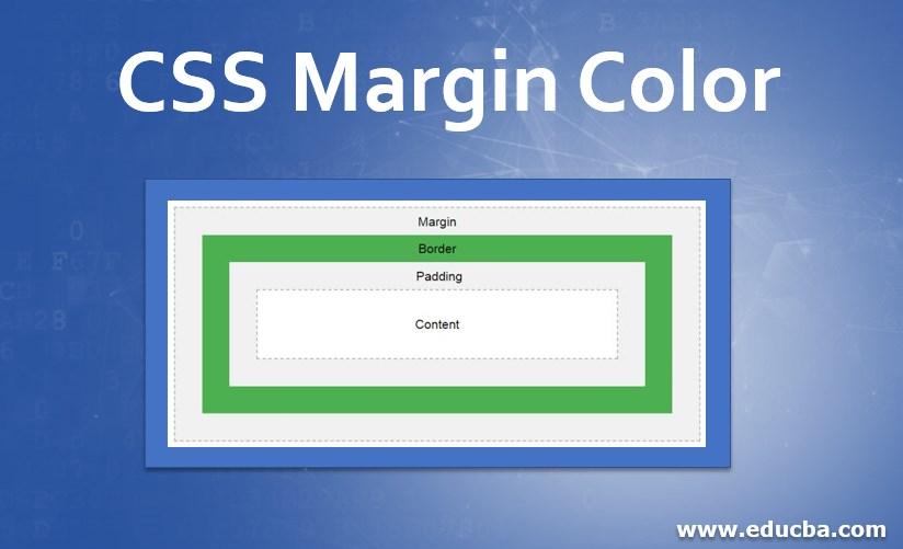 CSS Margin Color