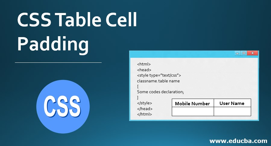 CSS Table Cell Padding