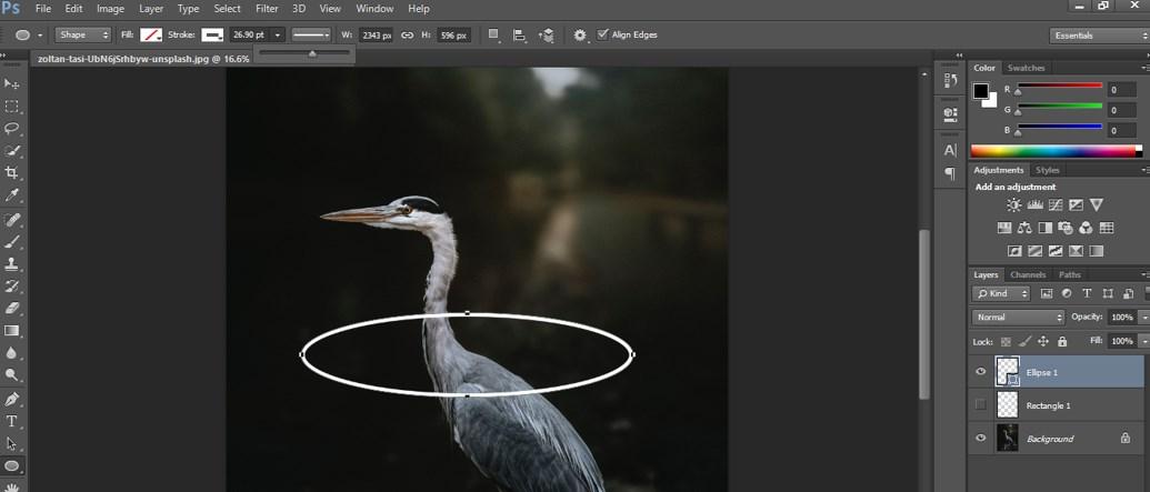 use ellipse shape
