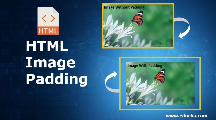 HTML Image Padding