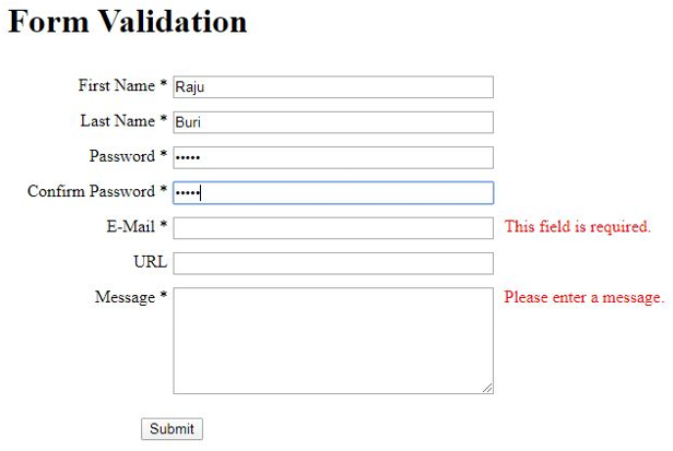 JQuery Form Validation output 6
