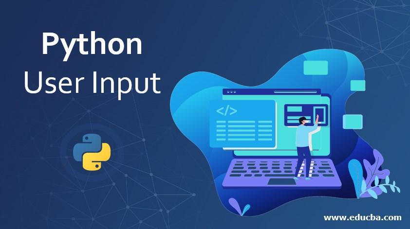 Python User Input