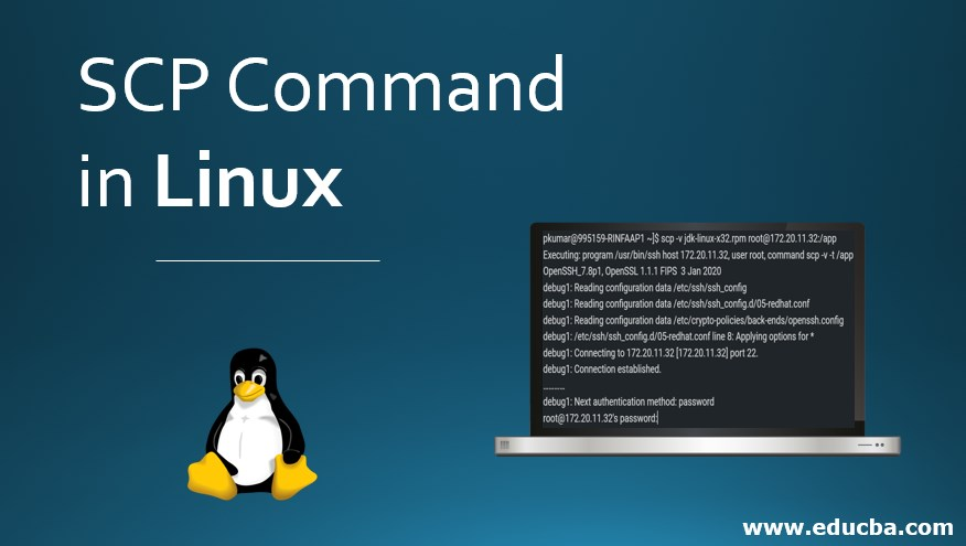 SCP Command in Linux