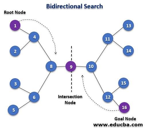 Bidirectional Search Algorithm