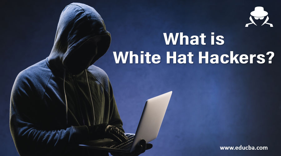 What-is-White-Hat-Hackers