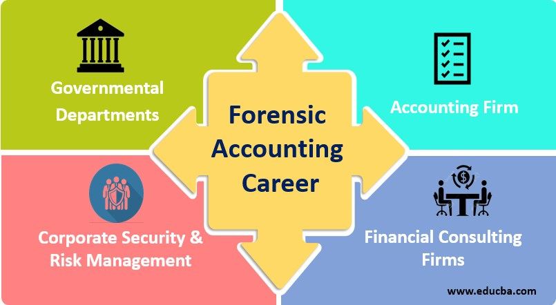 Forensic Accounting Career Career Path Of Forensic Accountants