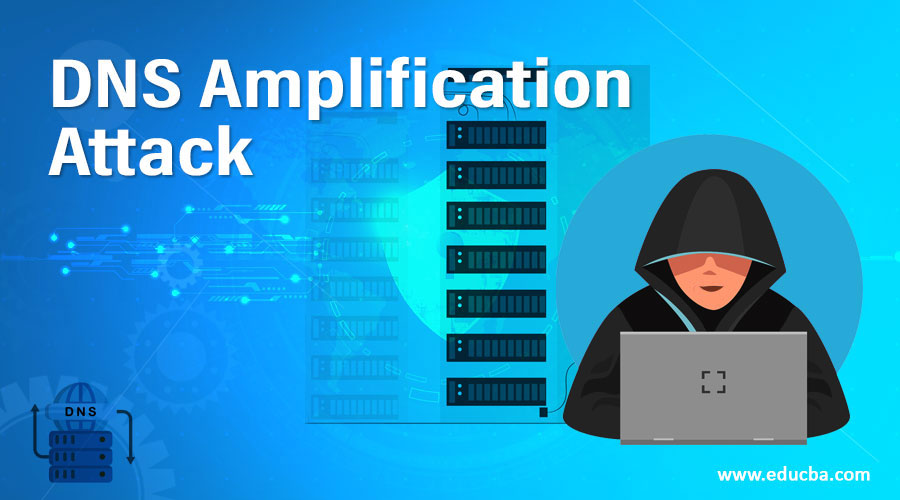 DNS-Amplification-Attack