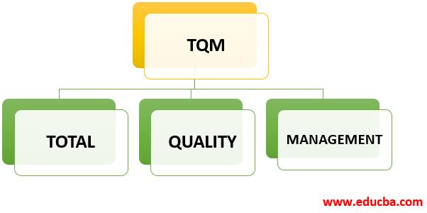 Full Form of TQM-1.1