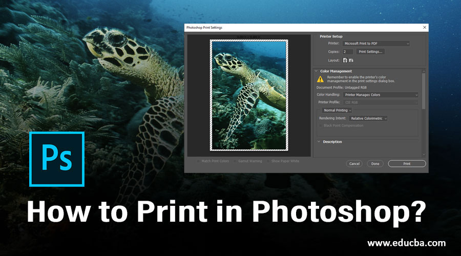 How to Print in Photoshop?