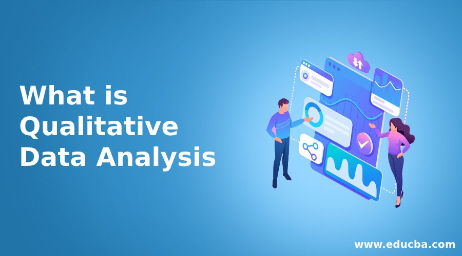 What is Qualitative Data Analysis