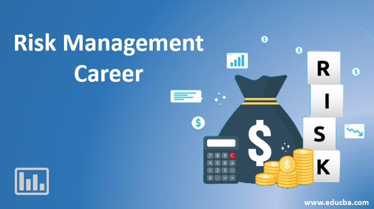 Risk Management Career
