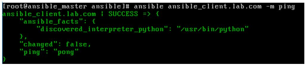 Ansible ad-hoc Commands 1