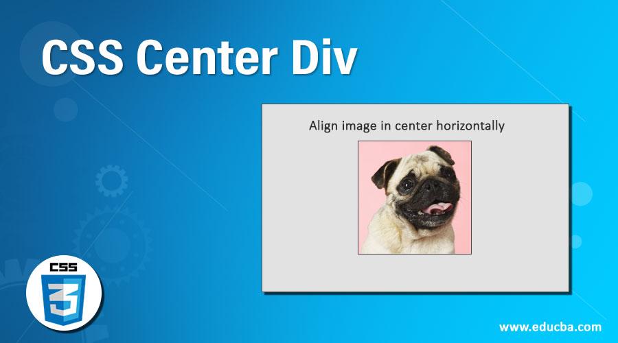 CSS Center Div